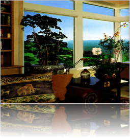 Residential Home Condo Window Films & Tinting